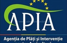 Plăți de peste 100 de milioane de lei către beneficiarii fondurilor de la APIA