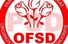 Clubul Femeilor Social Democrate din Călărași va fi lansat joi
