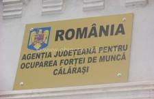 AJOFM Călăraşi/237 locuri de muncă vacante în această săptămână