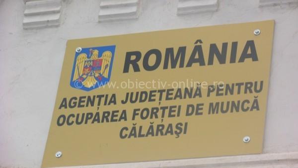 AJOFM Călăraşi / 7,3% rata şomajului înregistrat la 31 octombrie 2014