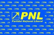 PNL, câștigătorul alegerilor europarlamentare în județul Călărași