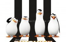 Centrul Cultural Judeţean Călăraşi – Cinema 3D/2D / Program Cinema: perioada 5 – 23 decembrie 2014
