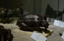 Expoziția Dagaro-Restituiri a fost vernisată la Muzeul Municipal Călărași