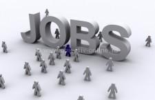 Rețeaua EURES pune la dispoziția lucrătorilor români 244 locuri de muncă în străinătate