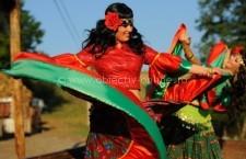 Primăria Călărași marchează Ziua Internațională a Romilor