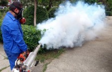 Primăria Călărași continuă tratamentele contra dăunătorilor vegetali