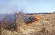 APIA avertizează fermierii să nu ardă miriștile