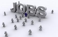 Peste 500 de locuri de muncă vacante înregistrate în evidenţa AJOFM Călăraşi, în această săptămână