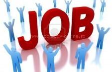 Peste 500 locuri de muncă vacante în această săptămână, oferite prin AJOFM Călăraşi