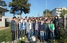 Ziua verde a eco-școlilor din România marcată la Școala Gimnazială Mircea Vodă