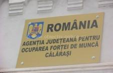 Peste 400 de locuri de muncă vacante înregistrate în evidența AJOFM Călăraşi