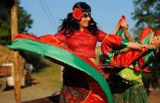 Primăria Călărași/Comunicat privind celebrarea Zilei Internaționale a Romilor