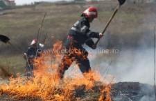 Intervenţie la incendiu de vegetație uscată și stuf pe marginea bălții în localitatea Mihai Viteazu, comuna Vlad Țepeș