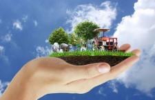 APIA a autorizat la plată peste 425 de milioane de euro pentru schema de înverzire și zone defavorizate