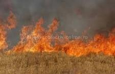 Călărași/Incendiu de vegetaţie uscată și mărăciniș