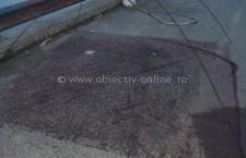 4 bărbați din Oltenița prinși de jandarmi pescuind cu scule interzise