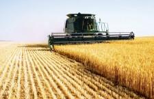 822 milioane lei de la Guvern pentru agricultori