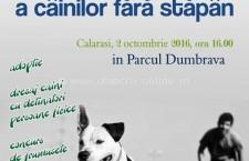 Adoptă și TU!/Târg de adopție a câinilor fără stăpân în Parcul Dumbrava din Călărași