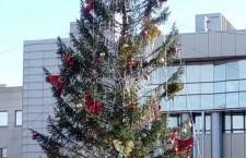 Programul sărbătorilor de iarnă pregătit de Primăria Municipiului Călărași și Centrul Cultural Județean
