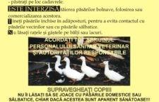 COMUNICAT DE PRESĂ/Material informativ cu privire la Influența Aviară, destinat crescătorilor de  păsări din exploataţiile nonprofesionale (gospodăriile populației)