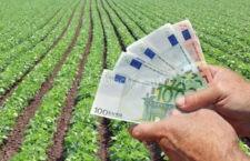 Sprijin financiar pentru agricultorii din sectorul vegetal/17,72 euro pe ha