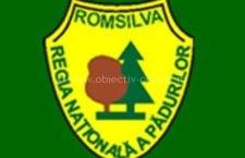 Romsilva a obținut certificarea managementului forestier la standarde internaționale pentru trei sferturi din pădurile de stat administrate