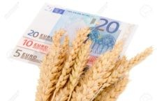 Guvernul a aprobat plăți pentru ajutoare în agricultură în valoare de circa 1,8 miliarde euro