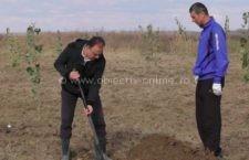"""La Chirnogi, primarul Irinel Roman s-a implicat în programul """"Adoptă un copac!"""""""