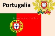 Locuri de muncă sezoniere în agricultură, în Portugalia – Campania 2018