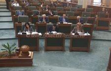 """Declarație Politică/Senator Roxana Pațurcă: """"Podul peste Dunăre, în zona Călărași – Silistra, este o necesitate"""""""
