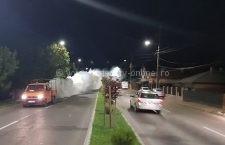 A început a doua etapă de dezinsecție în municipiul Călărași