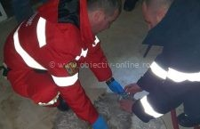 Video | Bichon intoxicat cu fum, readus la viață de pompierii călărășeni