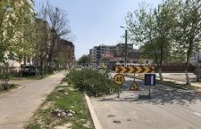 Primăria Călărași face precizări privind copacii tăiați pe strada Năvodari