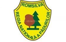 Bugetul de venituri și cheltuieli al Romsilva prevede creșterea semnificativă a investițiilor comparativ cu anul trecut
