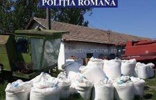 Bărbat din Jegălia, cercetat penal pentru infracțiunea de depozitare necorespunzătoare a îngrășămintelor chimice