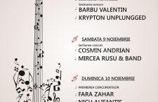 """Festivalul-Concurs Naţional de Muzică Folk """"Chitara Dunării"""" – ediţia a XI a – 2019"""