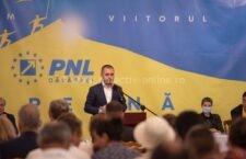 Alegeri în organizația județeană a PNL Călărași. Ciprian Pandea, singurul candidat